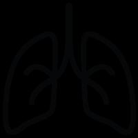 Transplant Organ